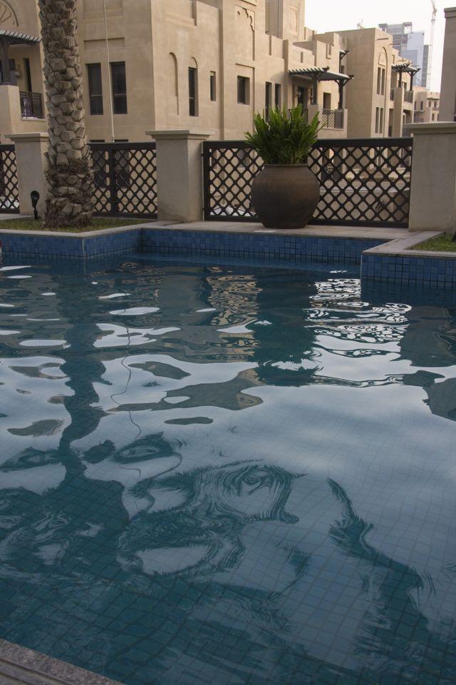 Dubai Al Manzil Pool